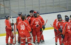 Falu IF fick äntligen jubla i kvalserien till Hockeyettan.
