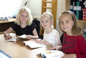 Alva Eliasson, Wilma Hedström Huss och Rut Lindros, klass 3, Allsta skola, Sundsvall med en ryslig historia.