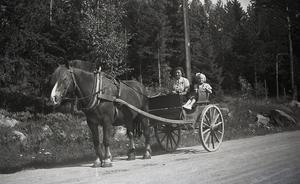 En bild från landsvägen vid Kungsgården i Högs socken 1929. Anna Hjelm åker häst och trilla till stugan på Bromsvallen. Flickan som åker med är Elna Berglund, gift Jonsson.