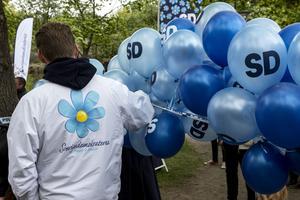 Medvind. SD ökar bland  väljare med utländsk bakgrund.