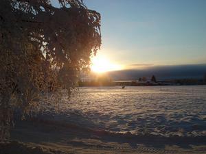 Visst är det vackert i Järbo med vinter och snö, skriver Monica och önskar Arbetarbladets läsare en god jul.