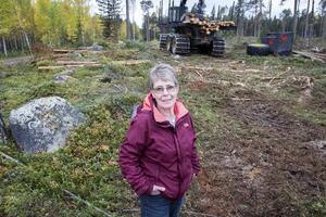Gunilla Rodhe upptäckte hygget när hon skulle plocka svamp.