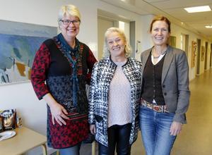 Monalisa Norrman (V), Ann-Marie Johansson (S) och Anna Hildebrand (MP).