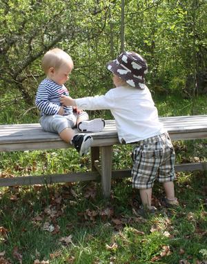 En solig dag i våras var kompisarna Dante (då 10 månader) och Arthur (då 1 år och 6 månader) på utflykt. Arthur är mån om sin lilla kompis och håller i Dante så han inte ramlar ner från bänken. En härlig dag att minnas när kylan kommer krypande.