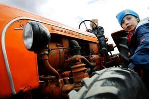 """Uppe på en traktor sitter Tor Sollander från Lugnvik. """"Det här är nog den första ko-premiären för mig"""", säger han."""