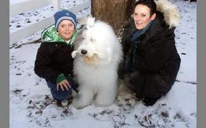 Årets Hund 2008, Villas Cruells at Dizzny, flankerad av Liam och Ingela Wallström.-- Hon älskar att stå i centrum, säger matte Ingela.FOTO: PÄR SÖNNERT