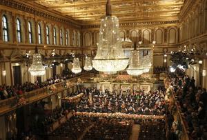 Musikverein i Wien är ett typexempel på en skokartongsformad konserthall, vilket verkar vara bra för musikupplevelsen, enligt finska forskare.
