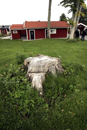 Blöta. Före Hjälmarens sjösänkning låg Sjökrogen och dess kringliggande gräsmattor under vatten.