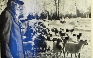 Lennart Wålstedt var det som startade företaget på 20-talet och lyckades också avla fram Ryafåret.