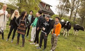 Diggiloo besöker 23 orter i Sverige i sommar.