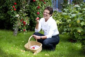 Moderaternas oppositionsråd Inger Källgren Sawela trivs i trädgården vid villan i Hagaström. Här tillbringar hon och maken Bo så mycket tid tillsammans som möjligt vid äppelträden.