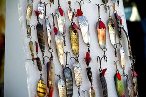 Fiskedrag – någon?