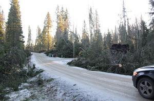 Vägen är ett ständigt samtalsämne i bygden, skriver Kerstin Vesterlund. Bilden är tagen i december 2013 efter att stormen Ivar hade dragit fram.