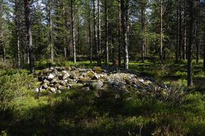Inom området är det gott om odlingsrösen som de första brukarna av området har lagt upp för att kunna bruka jorden.