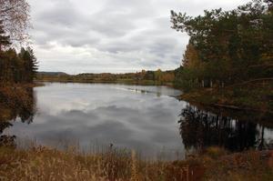 Oxbergssjön där simskola arrangeras varje sommar.