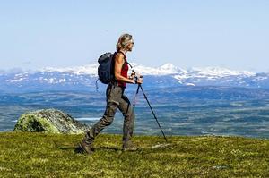 – Det finns goda skäl att inte låta riksgränsen mellan Sverige och Norge bli en konstlad gräns för vandring. Vi ser det som att fjällen i västra Härjedalen och de på den norska sidan hänger ihop, säger Eva Wallstam.