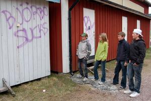 Besvikna. Jesper Karlsson, Frida Olsson, Fredrik Gråbo och Patrik Svanström var besvikna över att någon klottrat på ishallen och skolan.