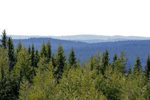 I dag blånade berg i Finnskogarna