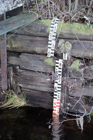 Det mesta av virket i har spruckit och murknat och vattnet flödar fritt genom dammen.