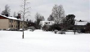 Här på Källstavägen i Sollefteå kan det snart byggas hyreshus.