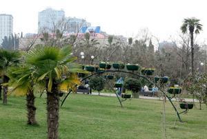 Sotji är en grön stad. Men så är också klimatet subropiskt.