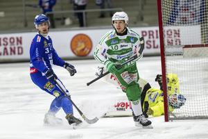 Ted Bergström stannar i VSK Bandy.