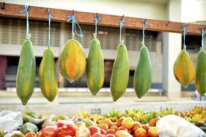 Den livfulla fruktmarknaden i huvudorten Scarboruogh är värd ett besök.