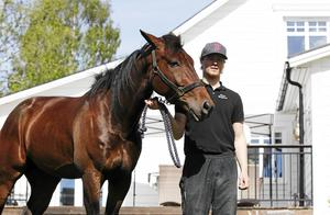 Med tre segrar på de fem senaste dagarna får tränare Oscar Berglund verkligen vara nöjd med sina hästar, som till vardags huserar i stallet i Brunflo. Hästen på bilden omnämns inte i texten.