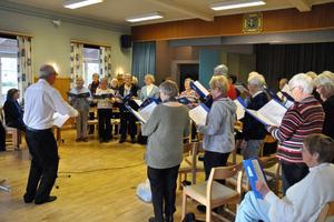 Olle Gustavsson dirigerade Orionkören i Naglarby bystuga. Kören kompades av Rut