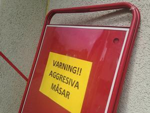 En lite udda varningsskylt.