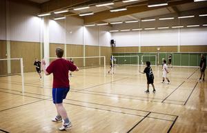Numera är det full fart på banorna när Ludvika Badmintonklubb har sina träningar. Ett uppsving har gjort att klubben den här säsongen har ett 25-tal ungdomar i sin verksamhet.