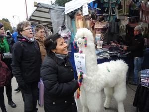 Det fanns gosedjur till försäljning och det fanns gosedjur i modell större som inte var till salu...