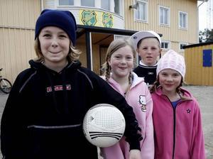Rasmus Jonsson, Ronja Jonsson, Max Widlund och Lisette Zetterberg tycker det är synd att isen försvinner från Mariehov.