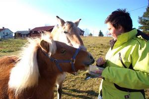 Matilda njuter nu av lugna dagar i Glissjöberg hos Bodil och hästkompisen Karamell.