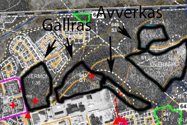 Karta över skogspartierna som ska gallras och avverkas.