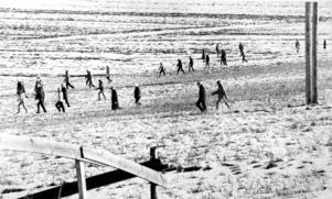 Skallgångskedjor, helikopter och polisens hundpatruller sökte efter Johan Asplund som försvann från sitt hem i Bosvedjan den 7 november 1980.