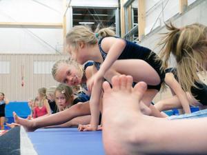 Lina Andersdotter tittar fram mellan tårna på sina medgymnaster. Arenan denna kväll rymmer drygt 100 småbarn som ger allt på gymnastikgolvet.