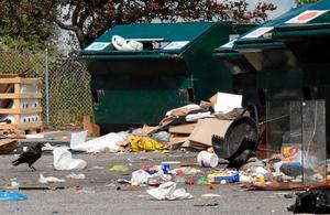 Ser trist ut. Man borde slippa se återvinningsstationerna, anser insändarskribenten.