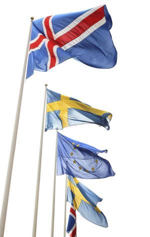 Nordisk morgoluft. Krisen i eurozonen återuppväcker förslag om ett närmare nordiskt ¿samarbete.foto: scanpix