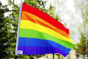 Med start torsdag genomförs Bollnäs Pride 2019. Foto: Arkiv