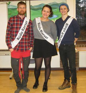 Viktor, Cecilia och Filip från Umeå universitet.