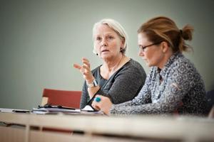 Småpartierna i majoriteten, företrädda av Monalisa Norrman (V) och Anna Hildebrand (MP) försökte förgäves få in sina käpphästar, V - att ingen ska sägas upp ur den administrativa personalen, MP- att landstinget nu kommer att äga en vindkraftpark i Småland.