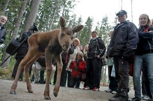 Flera av Arbetarbladets medarbetare hälsade på Kalle under en resa till Ockelbo på fredagen.