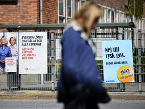 Spretiga krav. Partierna lyfter fram fler frågor än de som avgörs i EU-parlamentet i valet av svenska EU-parlamentariker.