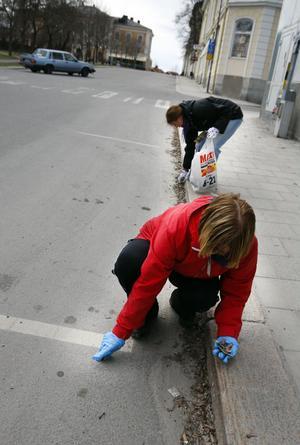 Centrala stan och Fiskarstan städades av frivilliga, på söndagen.