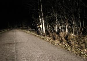 Den tragiska dödsolyckan inträffade på en mindre väg i Sunnansjö, utanför Ludvika.