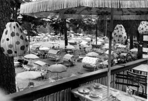 PARKFIK. I början av 1960-talet fanns det många sommarkaféer i Boulognerskogen. Ett av dem ägdes av Sören Aspelin.