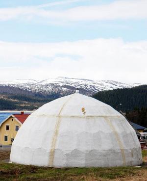 """""""Var ska det stå en permanent igloo om inte i Stora Blåsjön?"""", säger Lotta Falk, som driver älgfarm för turister uppe i fjällbyn i Frostviken.  Foto: Privat"""