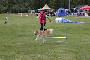 Evis Persson med hunden Lexie visade upp agility under fjolårets Helsinge Outdoor. Nu flyttas eventet till Bollnäs.