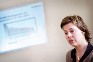"""Åsa Bergström-Schahine, regionchef för Företagarna i Jämtlands län, konstaterar att Åre kommun ligger i absolut topp i landet mätt i """"jämställt företagarindex"""" för 2008."""